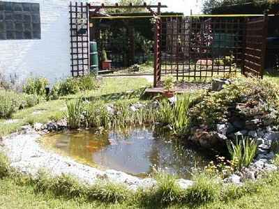 L 39 implantation d 39 un bassin de jardin for Implantation jardin paysager